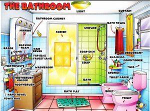 Giấy vệ sinh tiếng Anh là gì?