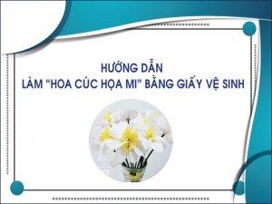 Hướng dẫn làm cúc họa mi bằng khăn giấy thegioigiay.net