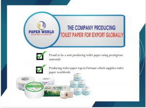 The company producing toilet paper